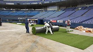 6. 人工芝の仮敷き