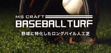 BASEBALL TURF