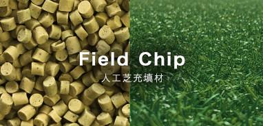Field Chip
