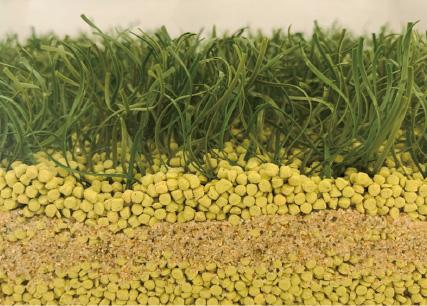 Field Chip 「Greentea」